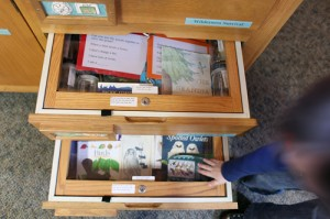 Olympic National Park ranger station with kids