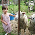 Families Travel! Sarah Goes on a Quadra Island Farm Stay