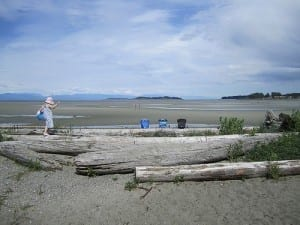 Parksville Rathtrevor Beach at Low Tide a Parksville beach