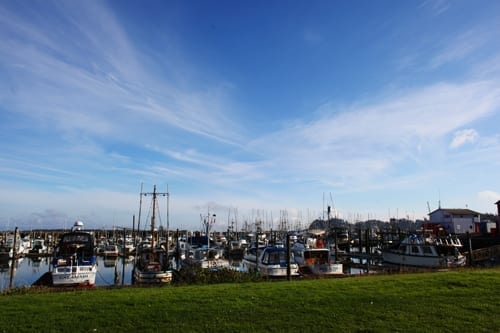 Ilwaco waterfront and boats near restaurants