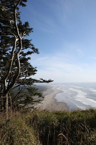Cape Disappointment State Park view ocean on the Long Beach Peninsula
