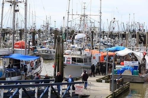 Steveston Fishermans' Wharf