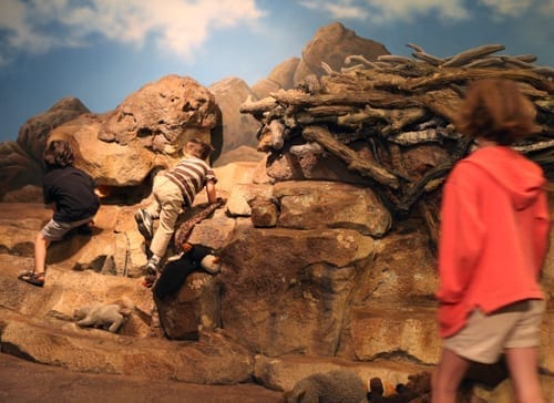Things to do with kids in Bend Oregon, High Desert Museum