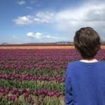10 Tips for Visiting the Skagit Valley Tulip Festival with Kids