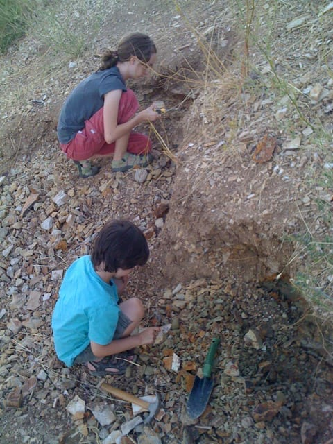 Digging for fossils with kids in Fossil